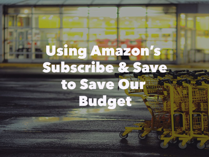 "Using Amazon's ""Subscribe & Save"" To Save Our Budget"